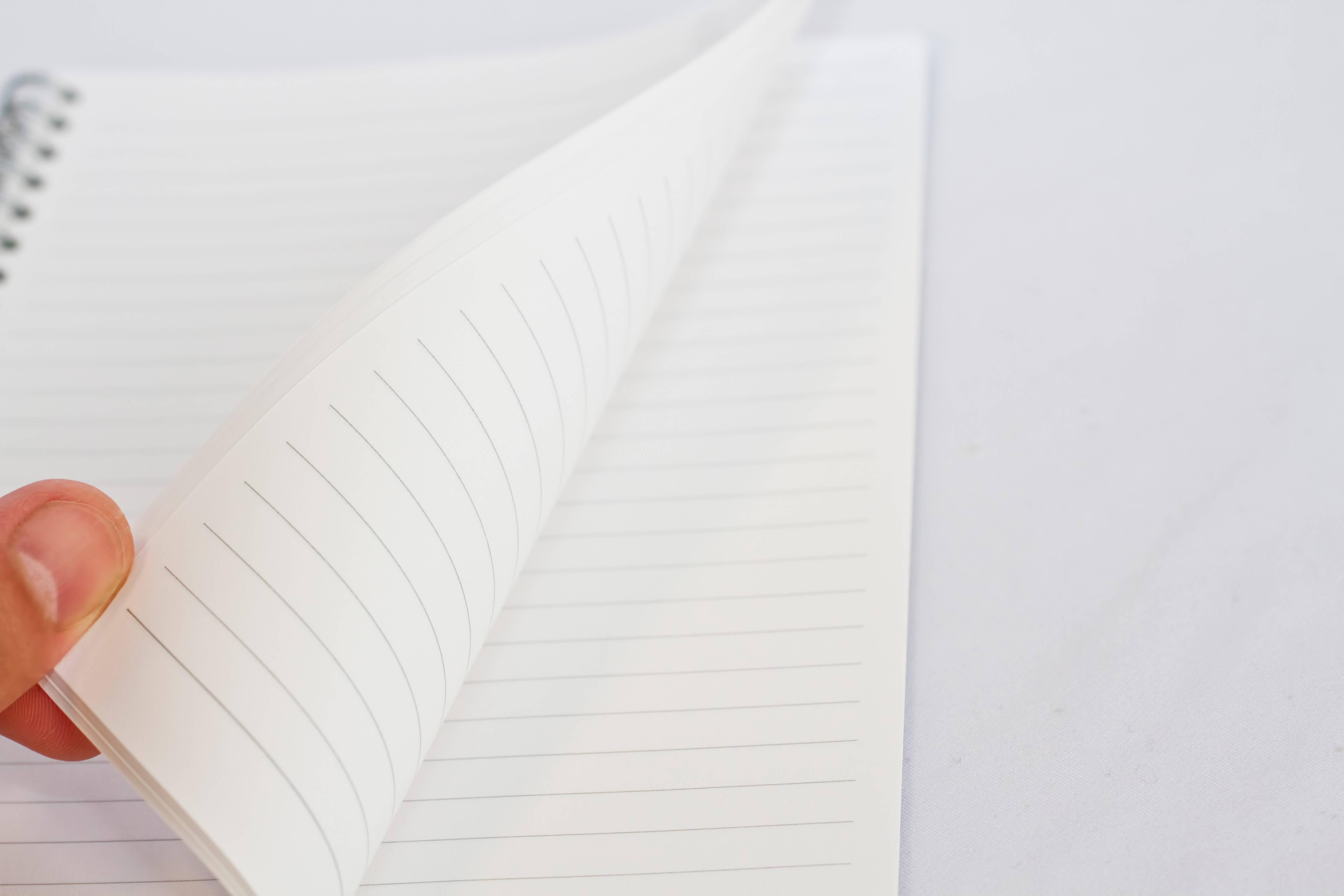 紙の魅力を最大に引き出す「紙のアート」