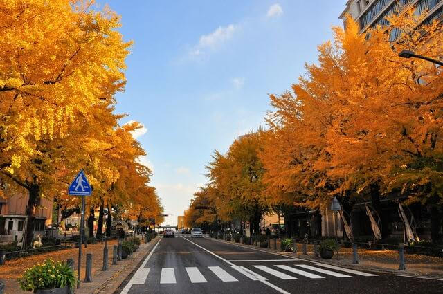 町名としては大き過ぎる「日本大通」の歴史を探ってみた