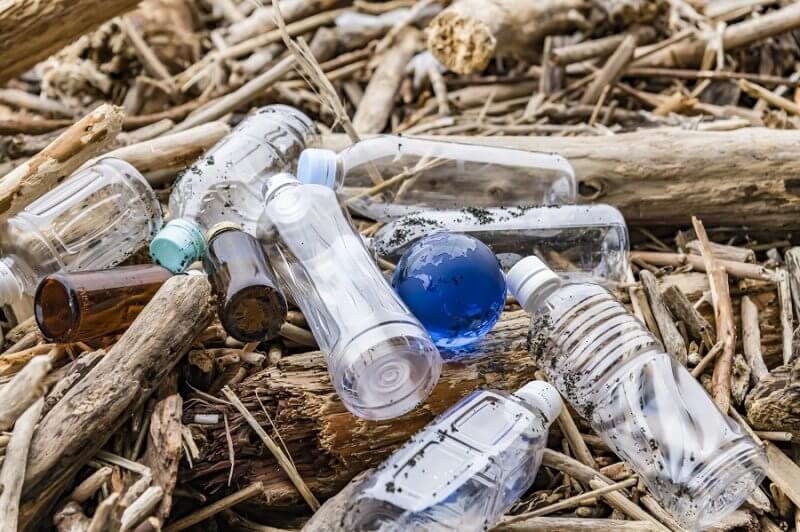 【プラスチックの替わりは…何? 】持続可能性を担保するための、FSC®という選択肢